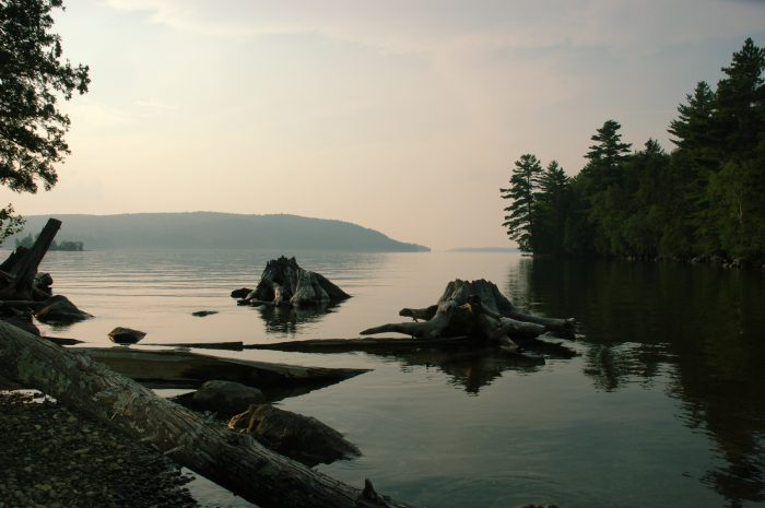 8. Lily Bay State Park Trails, Beaver Cove