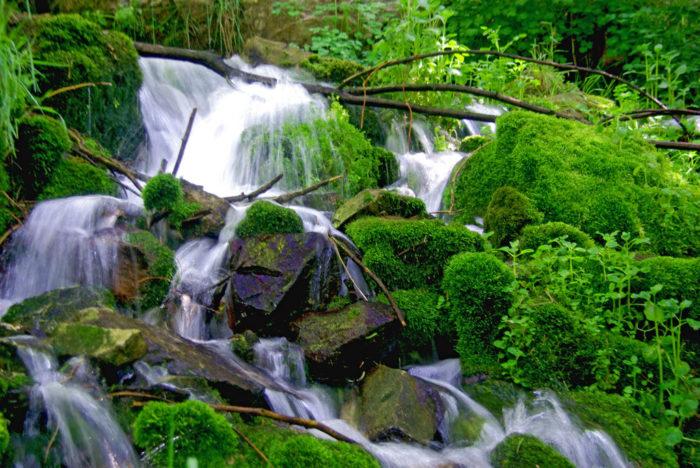 4. Horton Creek Trail #285