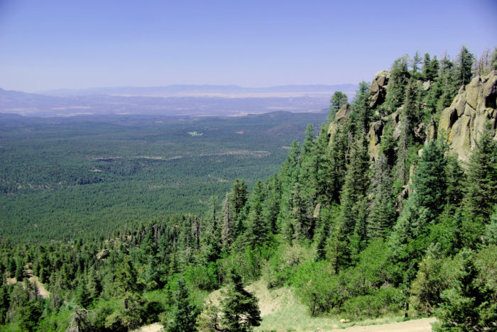 8. Take a hike up Bill Williams Mountain.