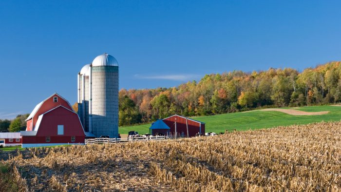 1. This beautiful farm is especially spectacular during the fall.