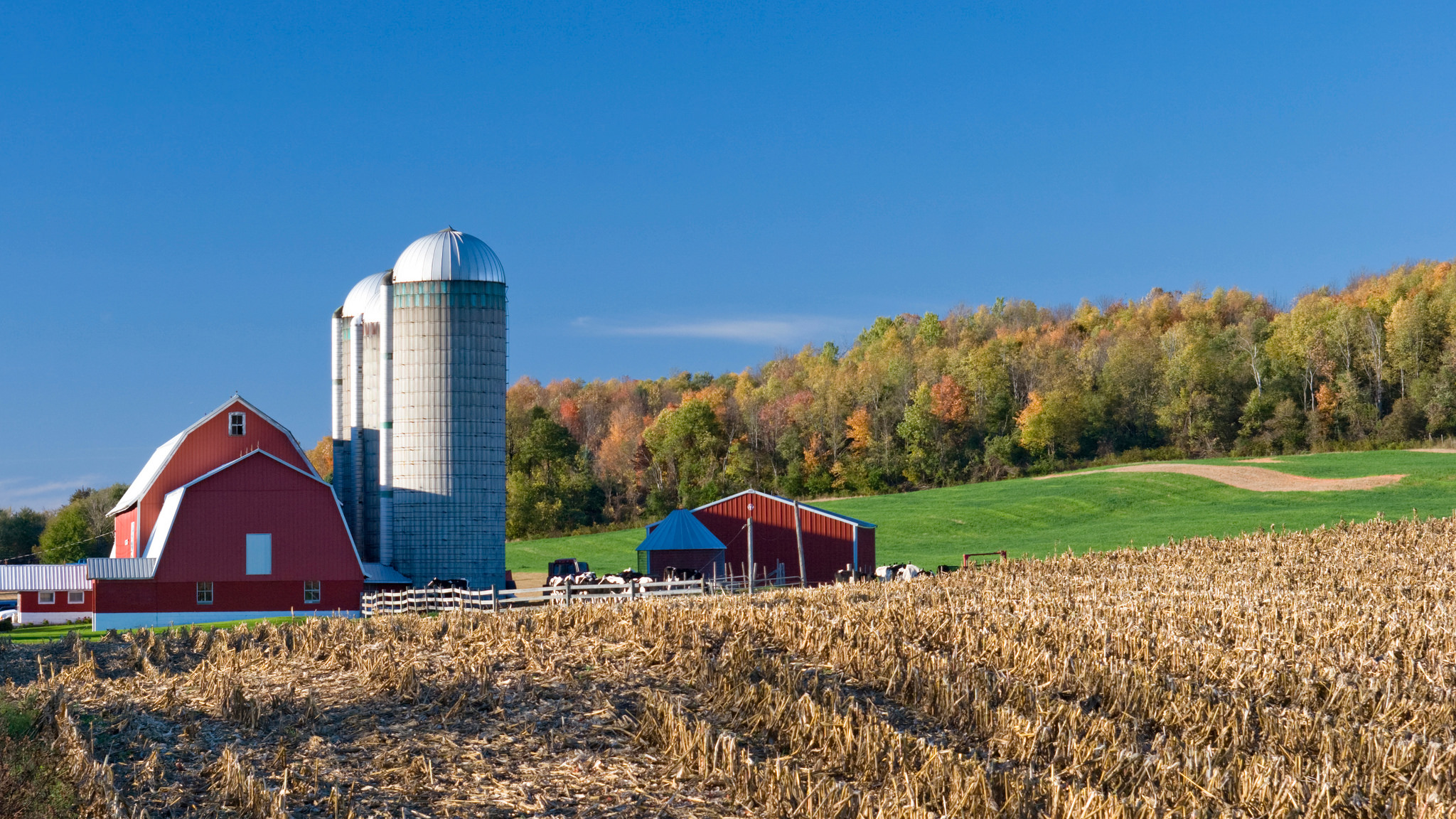 15 Beautiful Farm Photos Of Minnesota