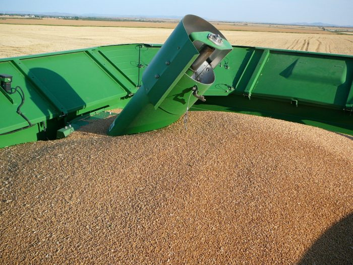 5. Corn Or Quicksand?