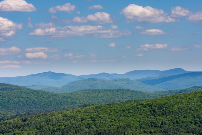 9.  The southern view from Mt. Phil shows why it's called the Green Mountain State.