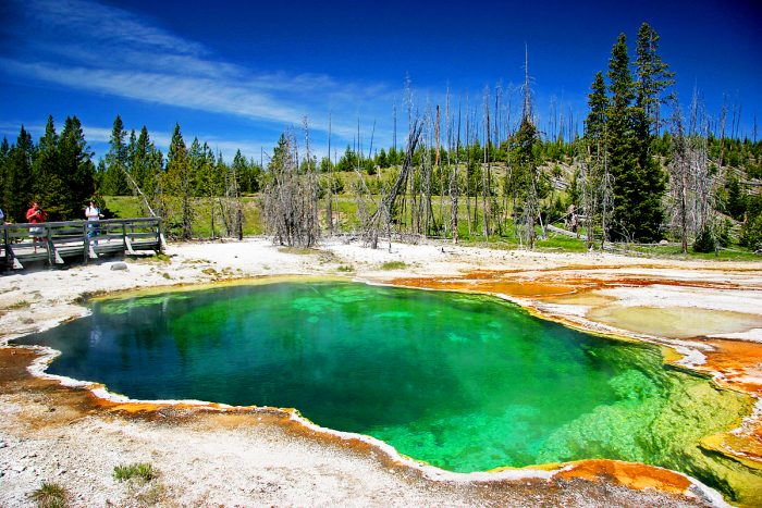 8. West Thumb Geyser Basin, Yellowstone National Park, Wyoming.
