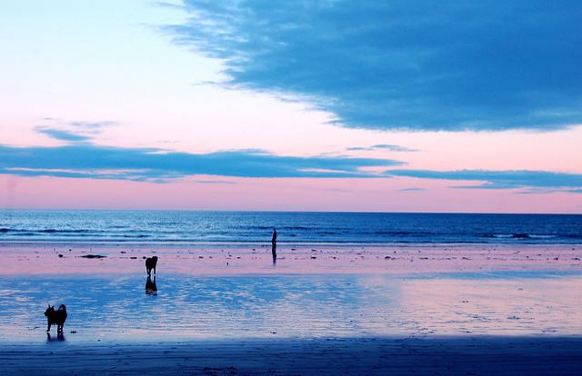 Jenness Beach, Rye