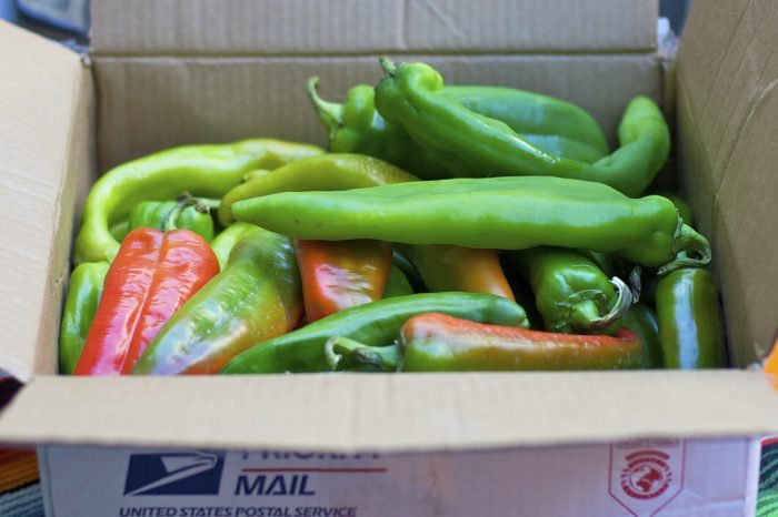 7. Most of Colorado's green chili recipes consist of Pueblo-grown chilies...