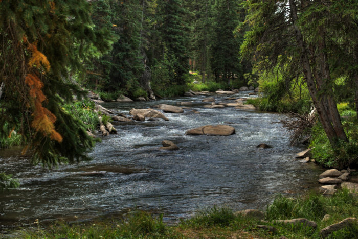 Big Horn Mountain Stream