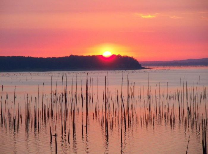 2. Carver Point State Park, Coffeeville