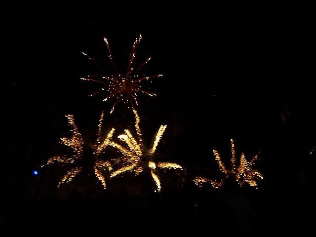 3. Idlewild Park's Fourth of July Fireworks