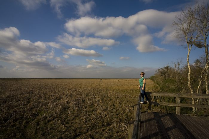 A gorgeous overlook that gives you a real sense of the marshland that surrounds New Orleans.