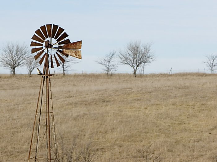 1. The winter sun does little to warm this windmill in a stark brown field.
