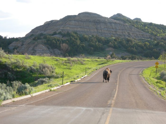 14. North Dakota: Theodore Roosevelt National Park North Unit Scenic Byway