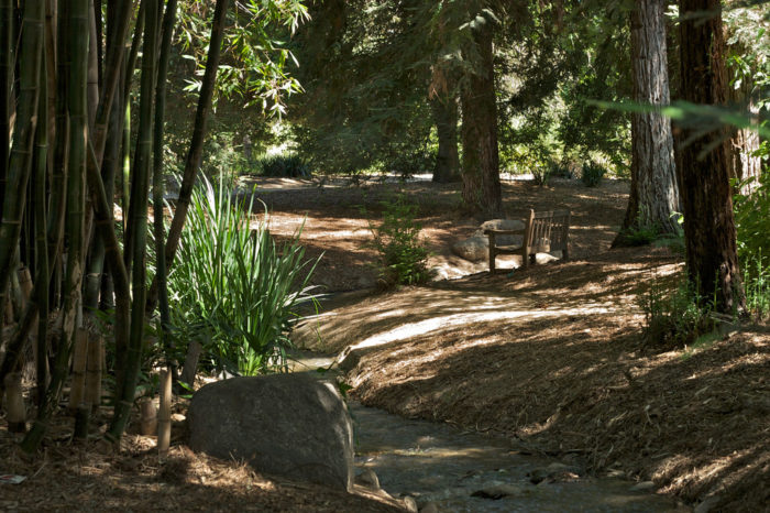 7. The Fullerton Arboretum and Botanic Garden has 26-acres of beauty to explore that will leave you feeling enlightened.