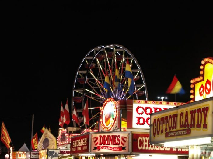 3. Ride the State Fair Ferris Wheel