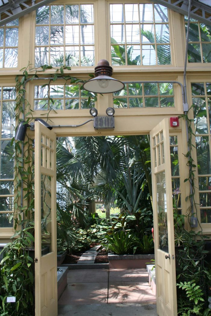 Step inside the main building, and you'll enter into the lush Palm House.