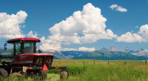 These 15 Charming Farms In Idaho Will Make You Love The Country