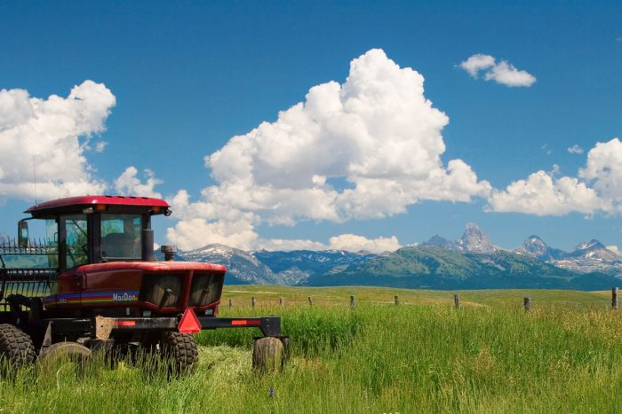14. This tranquil field near the Tetons is what dreams are made of.