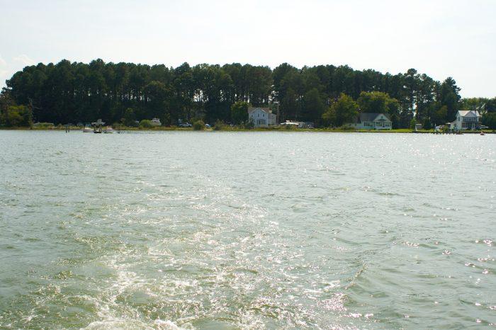 9. St. George Island