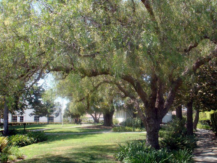 7. Yorba Linda -- Orange County