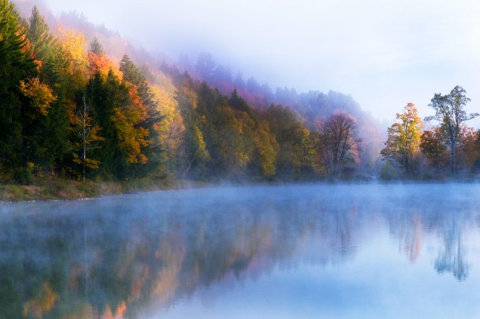 2.  Misty mornings at the lake can be surreal.