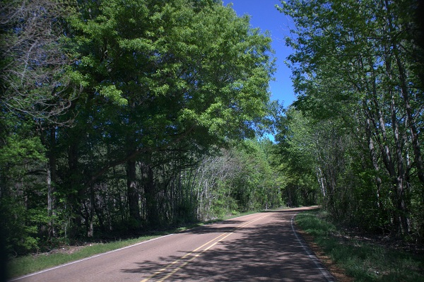 3. Great River Road Historic Scenic Byway, Woodville to Tunica