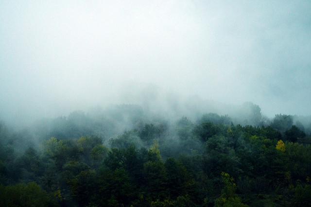4. Blue Mist Road