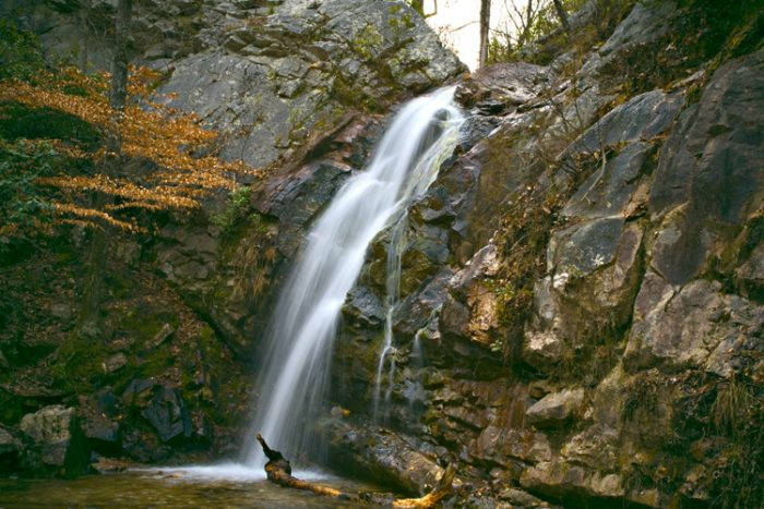 1. Green Trail  (Peavine Falls Trail)