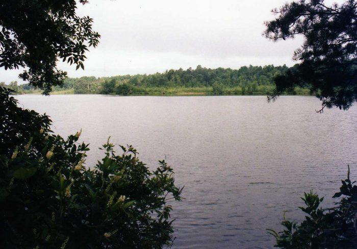 7. Killens Pond