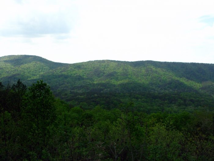 6. A drive along Hwy 281 will bring you to this beautiful view of Mt. Cheaha.