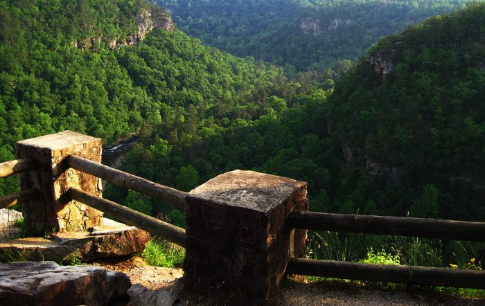 7. Here's another stunning view of Little River Canyon from Crow Point Overlook.