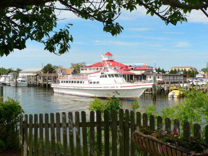 16. Go Cruising from Fisherman's Wharf