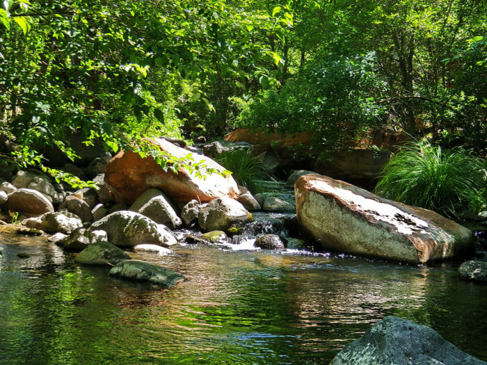 1. Bell Trail at Wet Beaver Creek