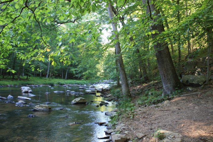 4. Hike along a babbling brook at Gunpowder Falls State Park.