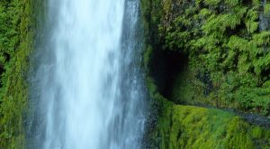 There's Nothing Quite Like This Magical Waterfall Tunnel Hike In Oregon