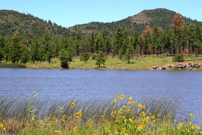 9. Go fishing or boating at Cataract Lake.