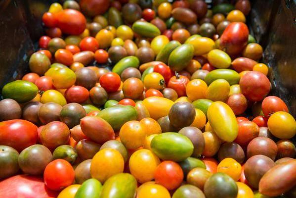 4. Tomato and Garlic Festival