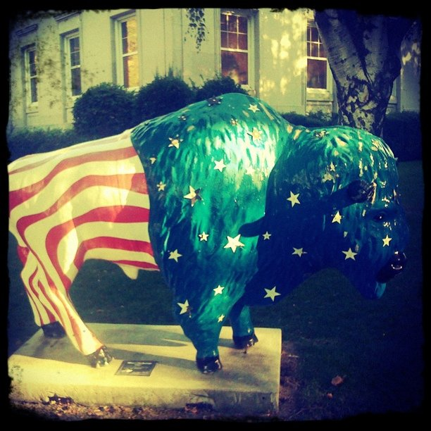 4. This bison stands outside the courthouse in Farmington...