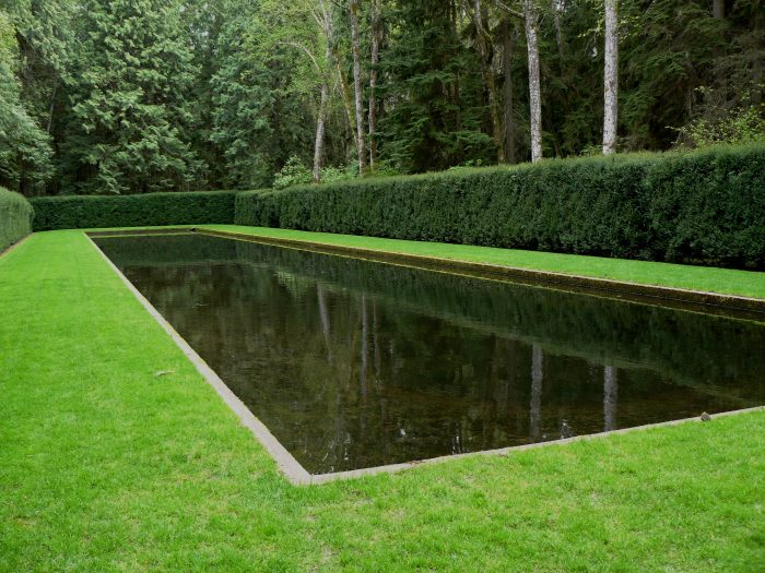 The Reflection Pool: