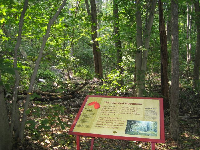 There are also forested areas, and informational signs educating guests about the environment.