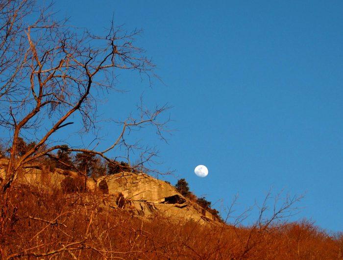 4. Mount Yonah Hiking Trail