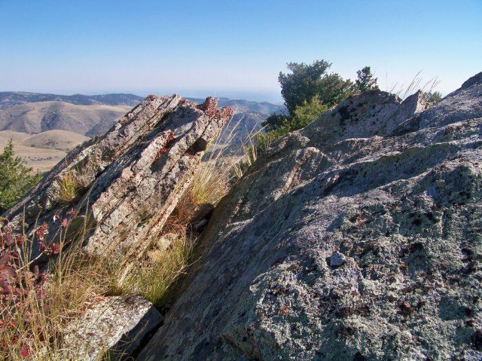 5. Elk Range Trail and Travois Trail at Centennial Cone Park