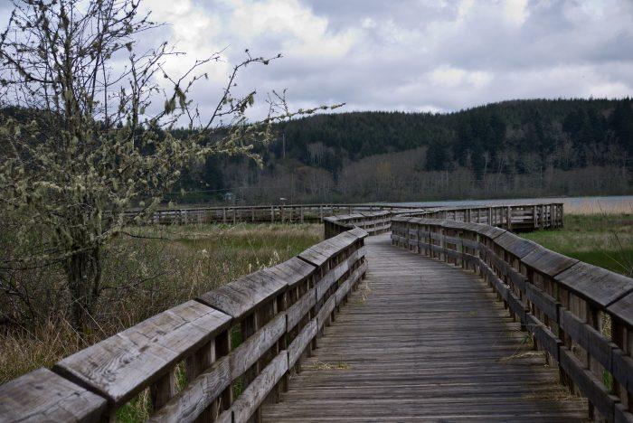 11. The Sandpiper Trail at Grays Harbor National Wildlife Refuge (Hoquiam)