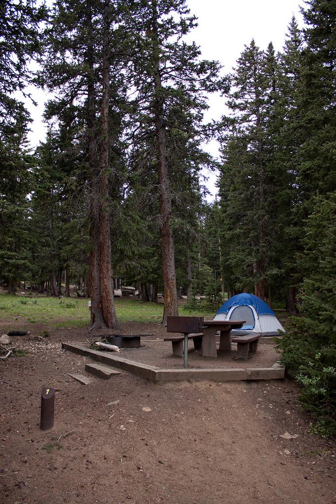 1. Echo Lake (Evergreen)