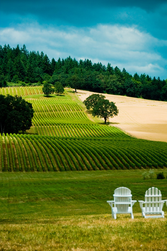 4. Watch the world go by (with a glass of wine in hand) in the serene Willamette Valley.
