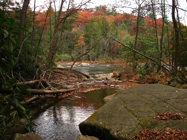 The water from Cucumber Falls flows into the Youghiogheny River, pictured here against the rustic backdrop of autumn.