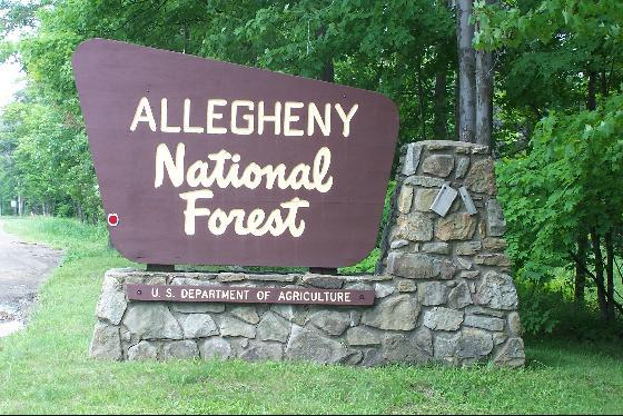 6. Allegheny National Forest