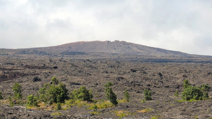 6. Walk on lava fields and hang out near volcanic vents at Hawaii Volcanoes National Park.