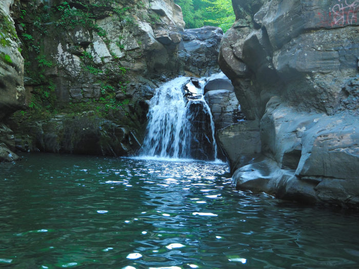 8. Picnic and swim at your local swimming hole.