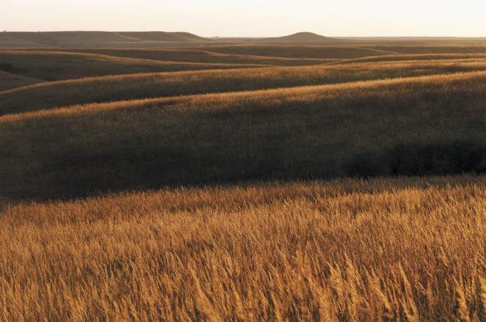 11. Tallgrass Prairie National Preserve (Strong City)