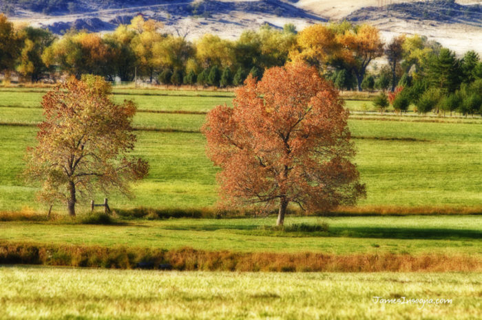 15. Finally, only in Colorado can you truly experience the four seasons in all of their glory.